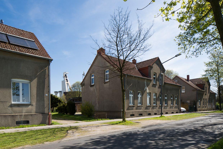Quartiere im InnovationCity roll out: Herten: Langenbochum / Paschenberg